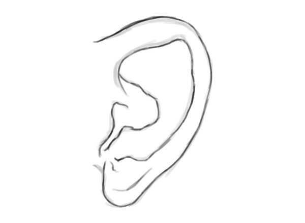 Sketching an Ear in Adobe Photoshop