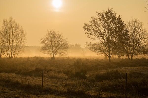 warm colour sunrise