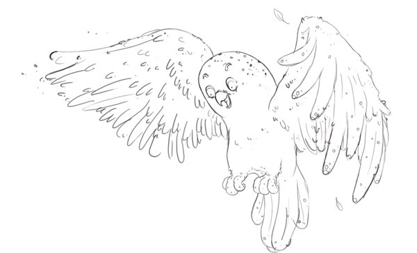 Owl completed line art