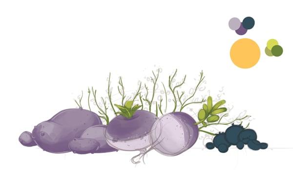 Turnip base