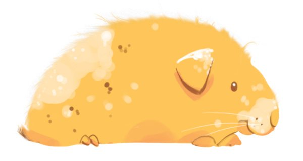 Finished detailed Guinea Pig Illustration