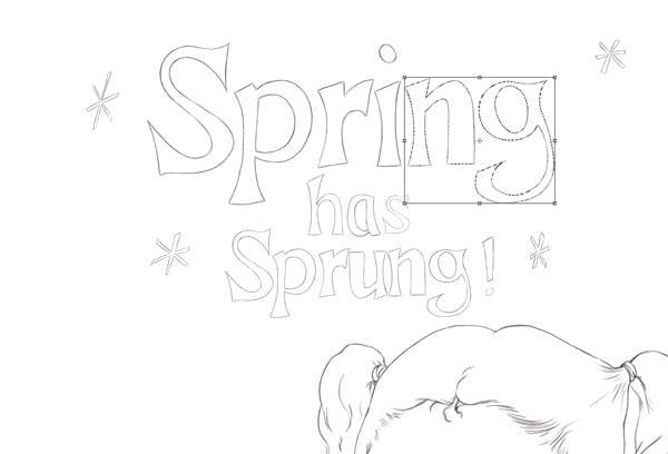 Spring Arrange N and G