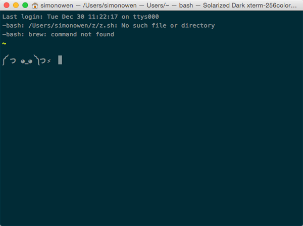 terminal styling