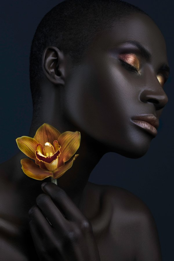Dark Orchid Photography by Lindsay Adler