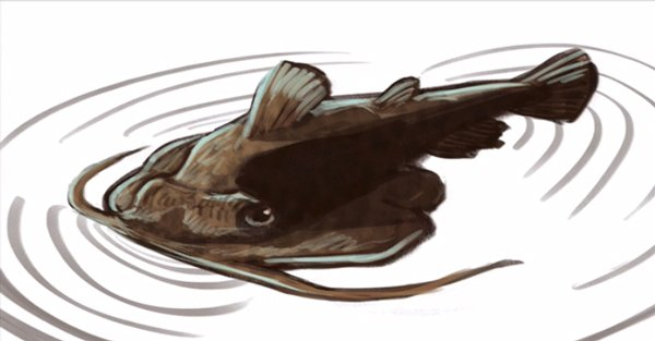 Fish painting created in course