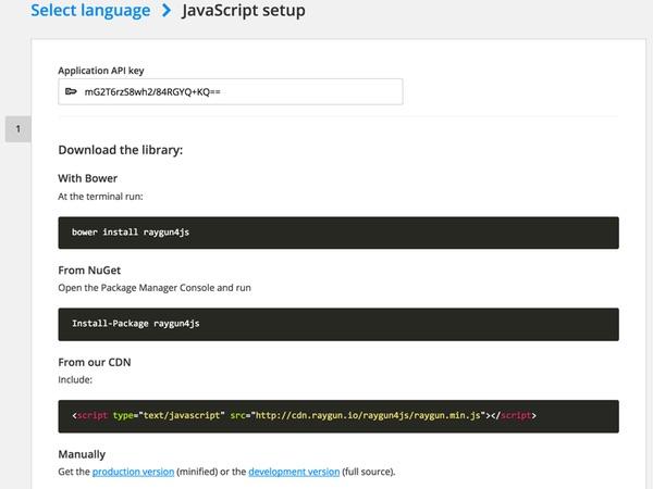 Raygun JavaScript setup screen