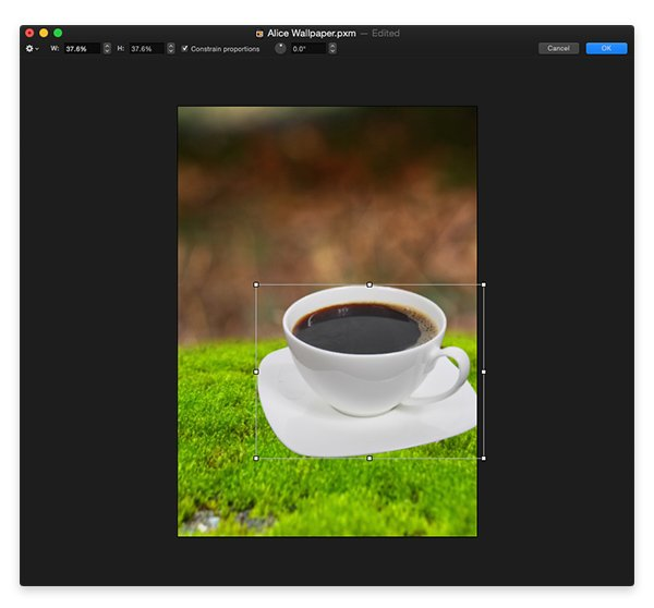 Paste the tea cup into your main document and resize and position it