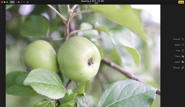 Apple Photos Test