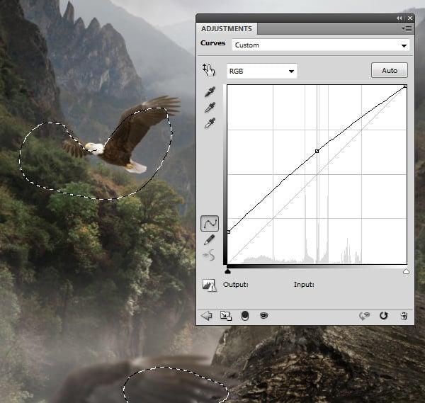 eagles 1 curves