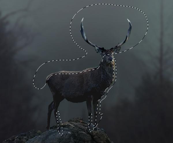 deer curves 2 masking