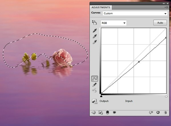 big rose curves