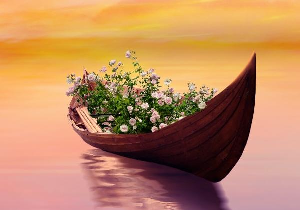 roses on boat masking