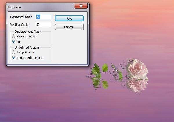 big rose displace