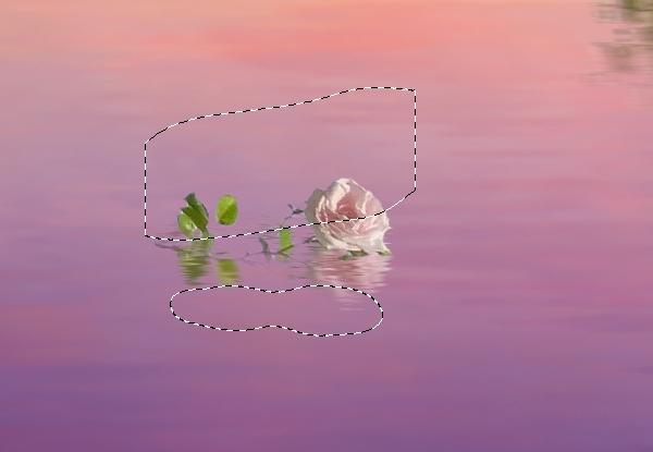 big rose reflection masking