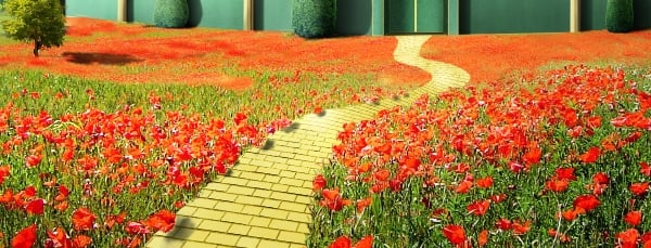 poppies shadow