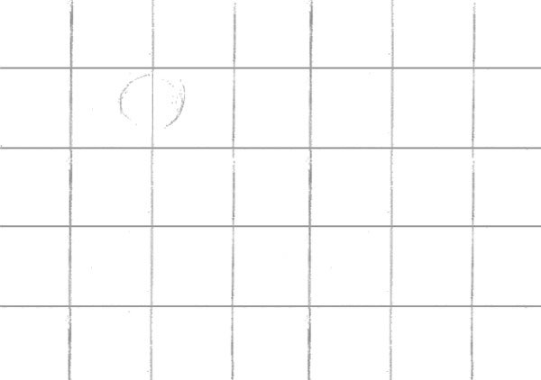 Start by using a simple circle to act as a jump-off point for our drawing
