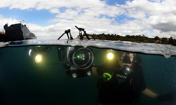 diver at surface split