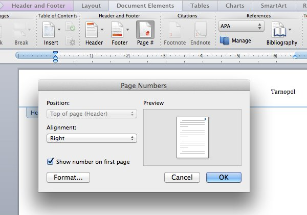Add page numbers in Microsoft Word