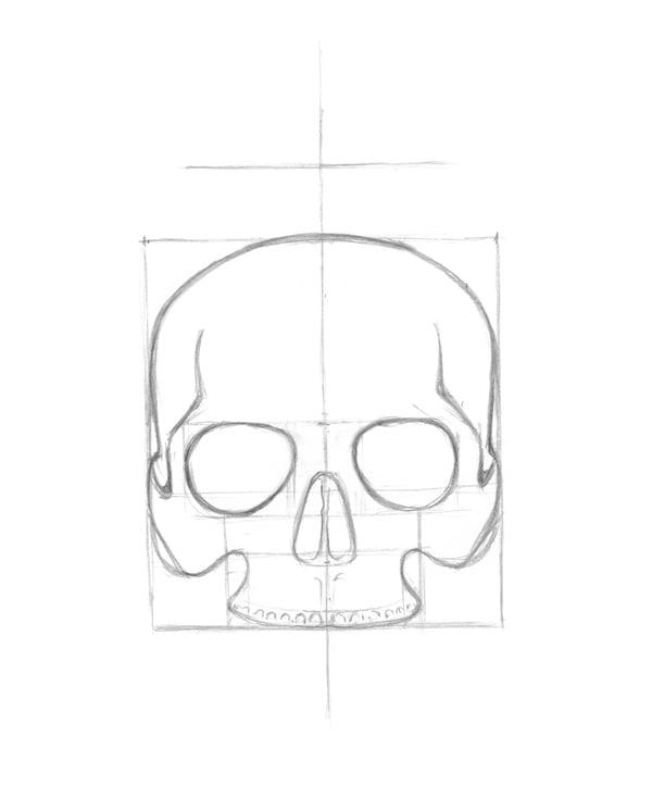 Refining skull shape