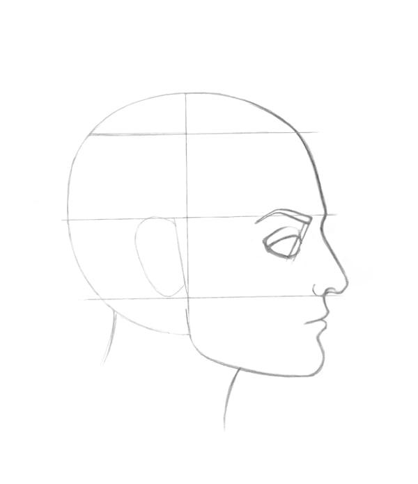 Drawing the eye shape
