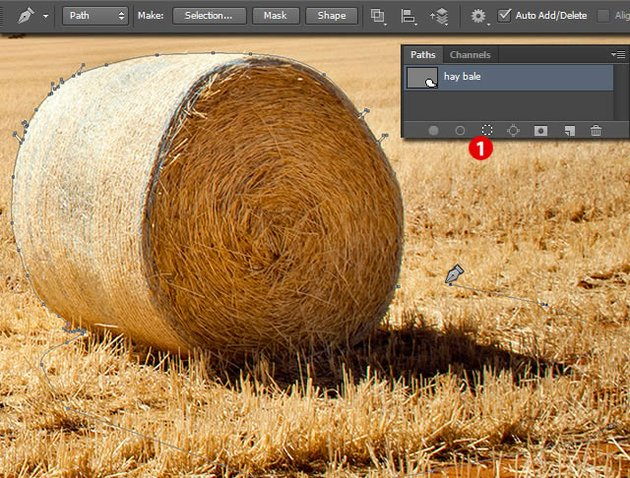 Create Basic Layers and Layout