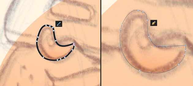 Use the Pencil Tool N to draw the nose