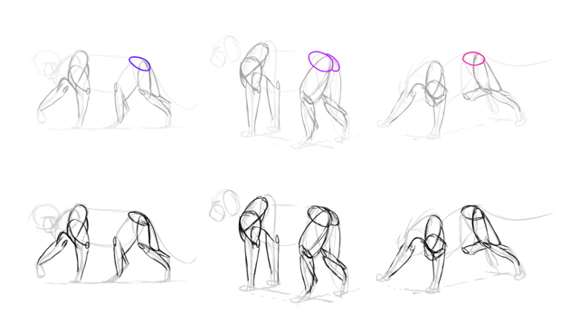 how to draw lion hips