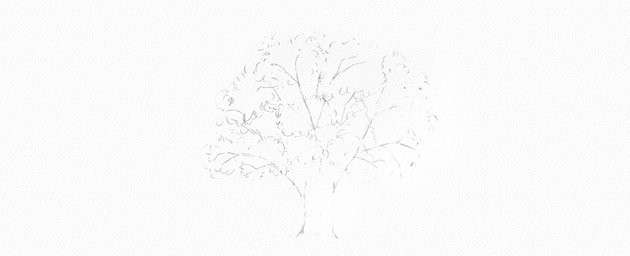 how to draw oak crown