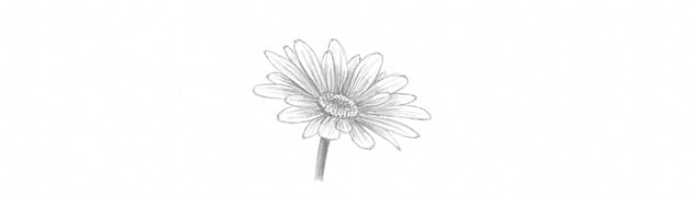 how to shade flower stem