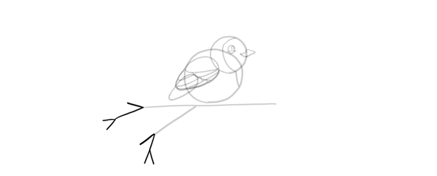 how to draw a complex branch