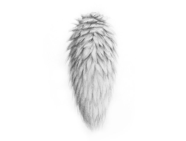 how to use machanical pencil for drawing fur