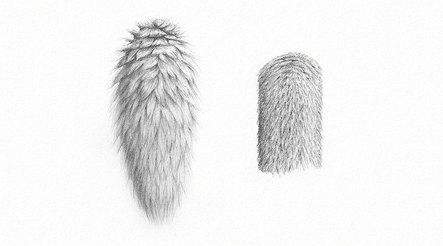 how to draw realistic fur with pencils