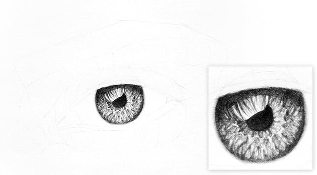 how to shade eye
