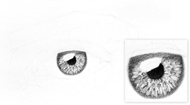 shadow on the eye