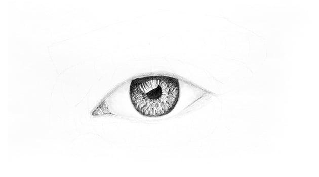 shade the eyelids rims