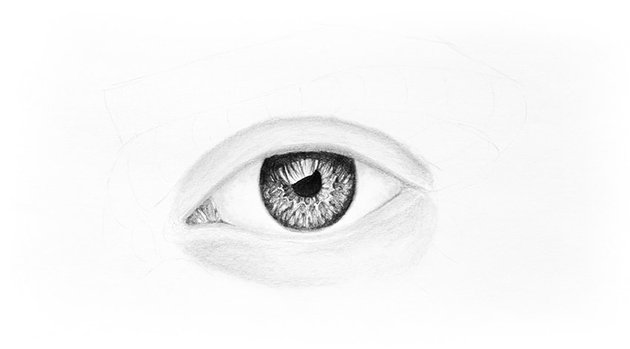shade the eyelids