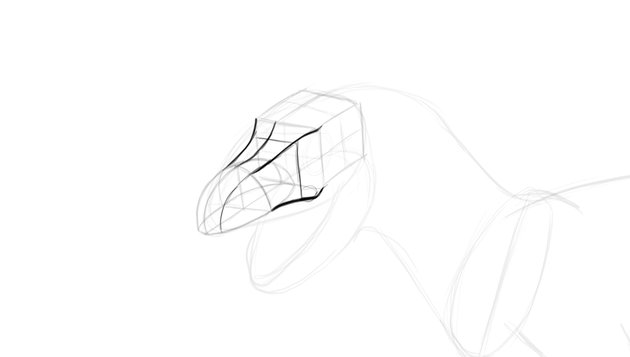 how to draw trex skull