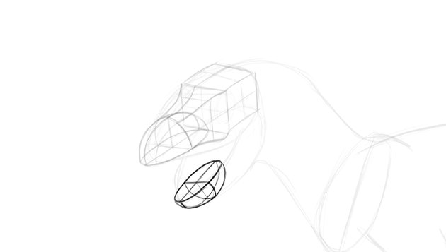 how to draw lower jaw