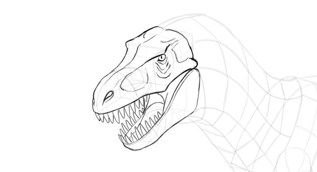 how to draw t rex skull details