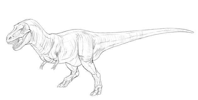how to draw dinosaur skin