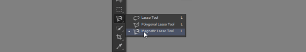 magnetic lasso tool