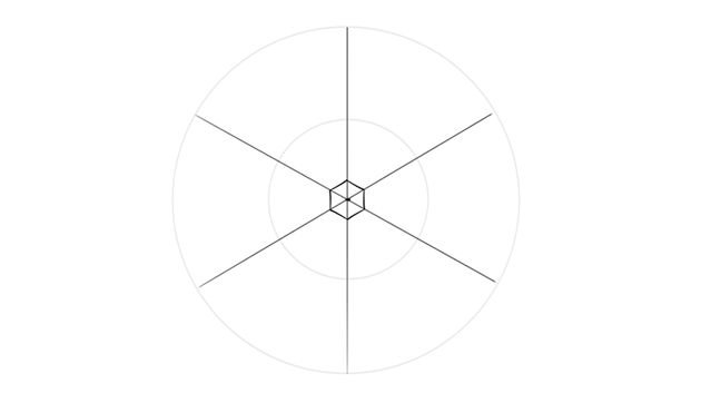 center of a snowflake