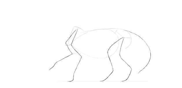 lion legs drawing