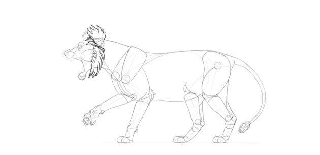 lion ruff