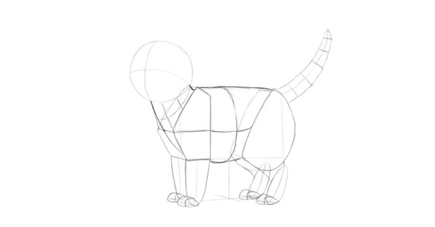 how to draw cat body in perspective