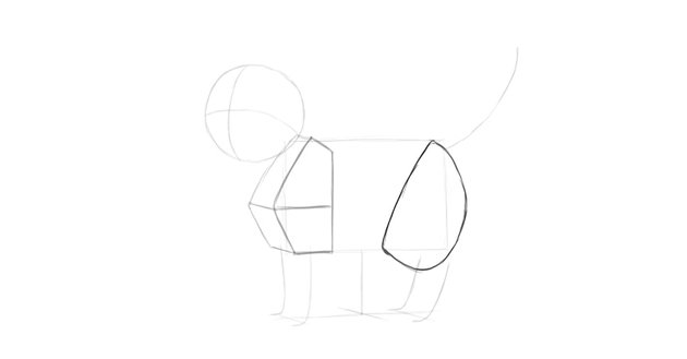 cat thigh drawing