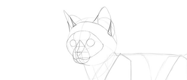 how to draw cat ears
