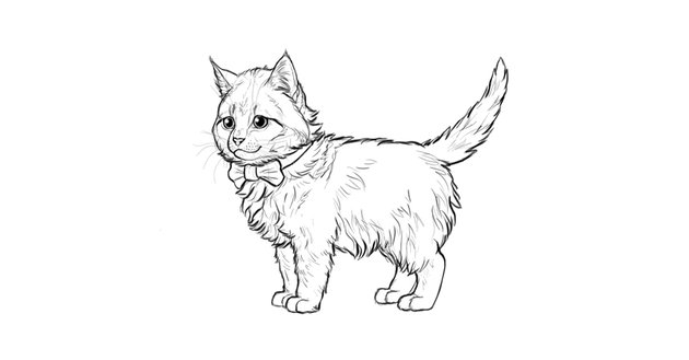 how to draw a cute kitten step by step