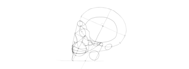 drawing skull front teeth