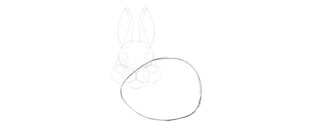 bunny body